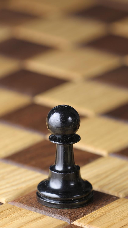 pawn meaning in Urdu - pawn in Urdu - U Dictionary: English Offline